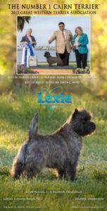 Lexie-GW-annons