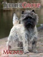 Magnus Cover Terrier
